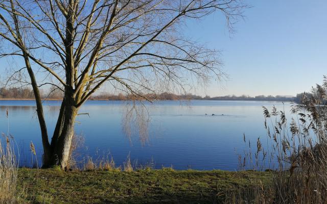 Wandel Coaching - Rond het meer
